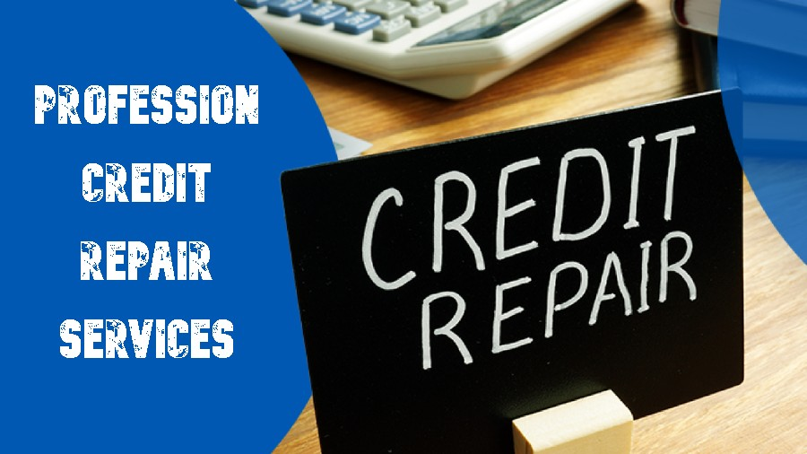 Professional Credit Repair Service
